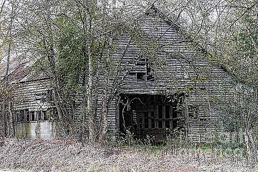Abandoned by Geraldine DeBoer