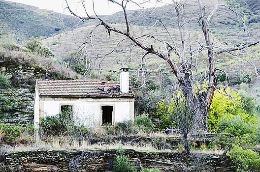 Oscar Gutierrez - Abandoned House and Dead Tree