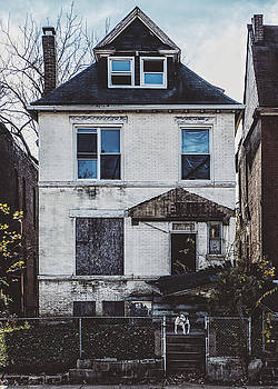 Abandoned House And Dog In St. Louis, MO by Dylan Murphy