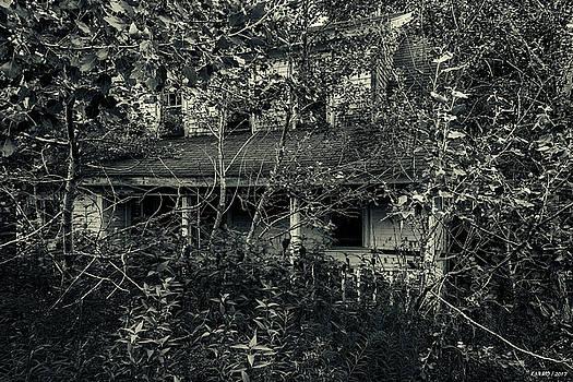 Abandoned House near Baddeck, Cape Breton by Ken Morris