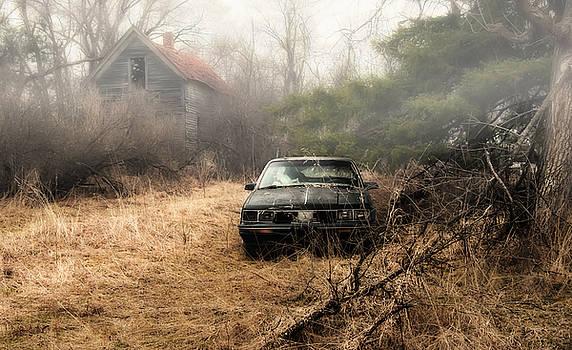 Melinda Martin - Abandoned in the Fog