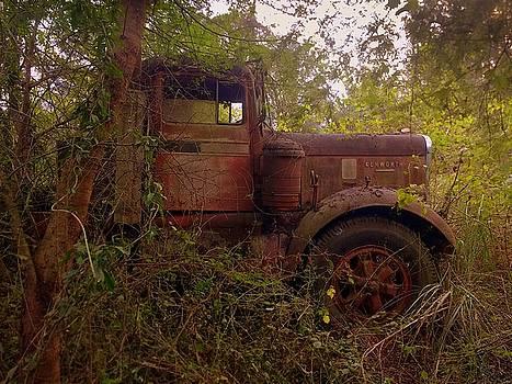 Abandoned Kenworth Truck 2 by Salman Ravish