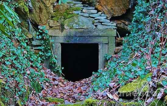 Abandoned Mine by Keri West