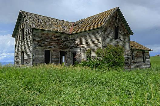 Sandra Bronstein - Abandoned Montana Homestead