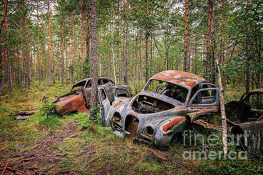 Abandoned old cars by Sophie McAulay