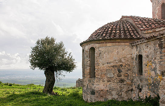 Abandoned old orthodox Christian church and olive tree  by Michalakis Ppalis