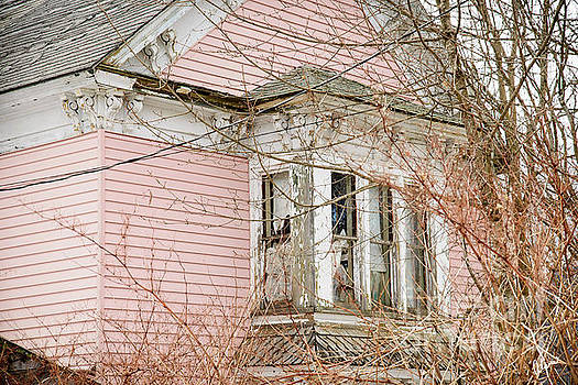 Abandoned Pink House by Alana Ranney