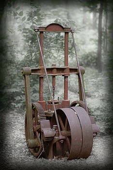 Abandoned Pump in a Woods by Larry Jost