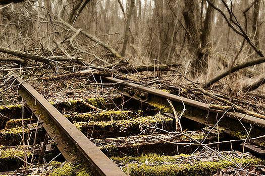 Abandoned Railroad 1 by Scott Hovind