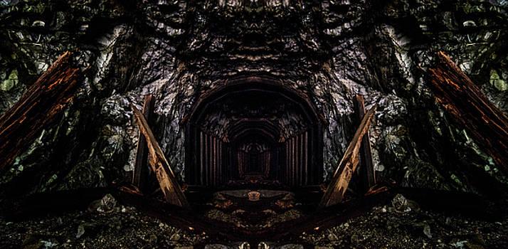 Pelo Blanco Photo - Abandoned Railroad Tunnel Reflection