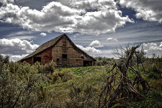 Abandoned  by Rod Stroh