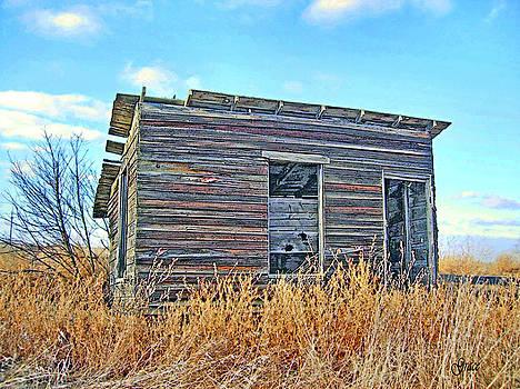 Abandoned Shack by Julie Grace