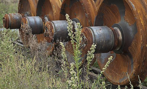 Michael Rutland - Abandoned Train Wheels