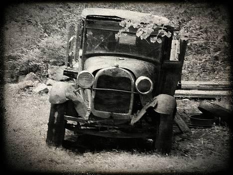 Abandoned Truck by Michael L Kimble
