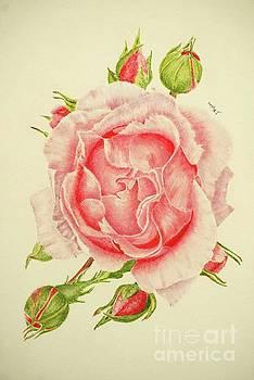 Abbi Rose by Jackie Kirby