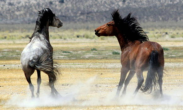 About to Rumble by Ron  Romanosky