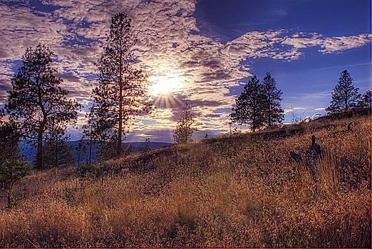 Paul W Sharpe Aka Wizard of Wonders - Above Lake Okanagan