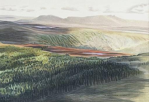 Above Llyn Conwy by Alwyn Dempster Jones