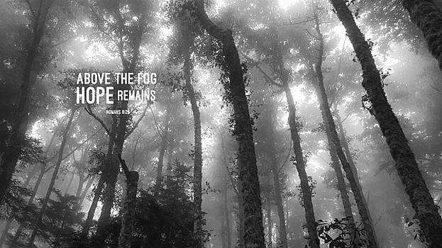 Bonnie Bruno - Above the Fog