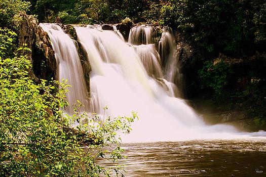 Jason Blalock - Abrams Falls