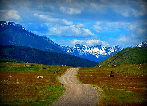 Leah Grunzke - Absoraka Mountain Road