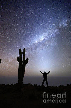 Absorbing the Energy of the Zodiacal Light Incahuasi Island Bolivia by James Brunker