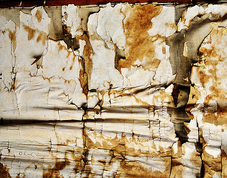 Abstract 1317 Old Wallpaper as Landscape by Kae Cheatham