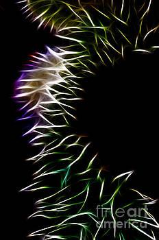Vivian Christopher - Abstract 20