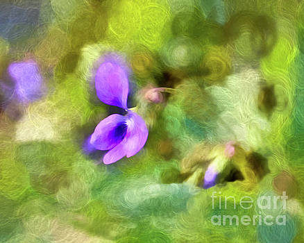 Abstract Art - Spring Violet by Kerri Farley