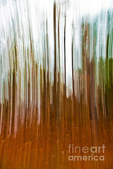 Abstract Autumn by Lisa Holmgreen