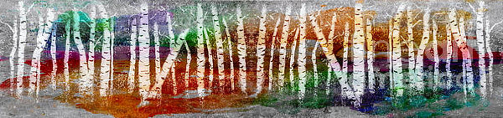 Abstract Birch Tree Forest 693016 by Mas Art Studio