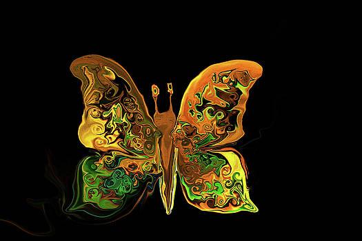 Abstract Butterfly by MaryAnn Janzen