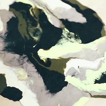 Abstract Camo by Cortney Herron