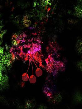 Abstract. Cherry by Natalya Shvetsky