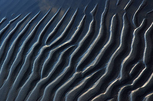 Reimar Gaertner - Abstract close up of Sand ripples at low tide