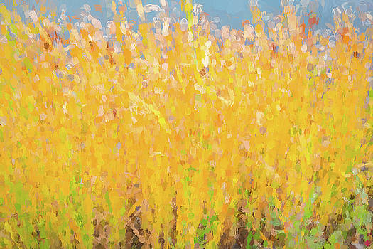 Abstract Colorful Cattails Grasses Painting by James BO Insogna