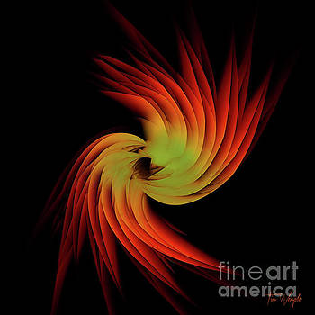 Abstract Feather 1 by Tim Wemple