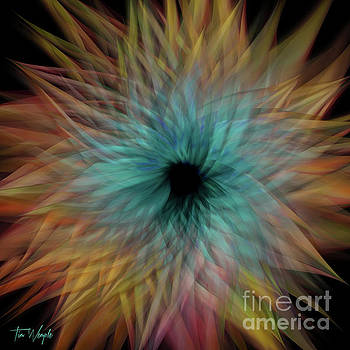 Abstract Flower 1 by Tim Wemple
