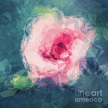 Angela Doelling AD DESIGN Photo and PhotoArt - Abstract Flower II