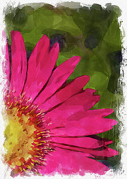 Ricky Barnard - Abstract Flower Watercolor XXII