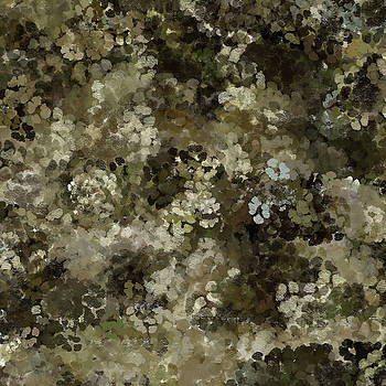 Abstract Gold Black White 5 by Clare Bambers