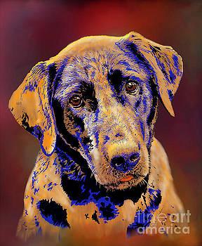 Abstract Golden Labrador Retriever Painting by Dale E Jackson