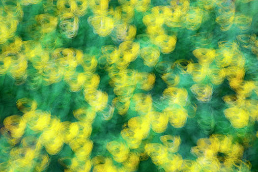 Vyacheslav Isaev - abstract green