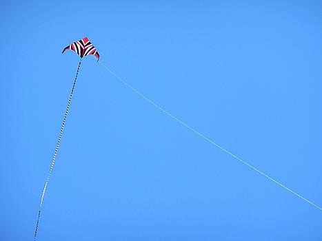 Marilyn Hunt - Abstract Kite Flying