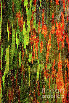 Abstract modern artwork streaks lines orange chartreuse by Amy Cicconi