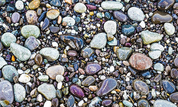 Abstract Nature Tropical Beach Pebbles 871A Blue Purple Pink and Orange 871A by Ricardos Creations