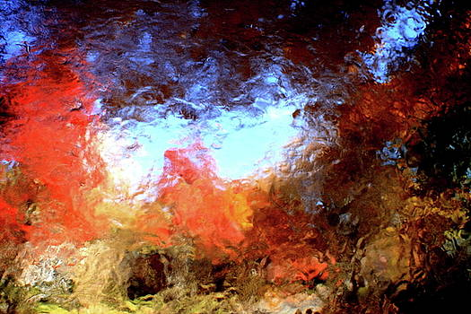 Abstract of Autumn IV by Charles Shedd