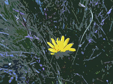 Abstract Of Yellow Flower by Eric Forster