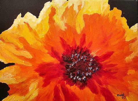 Mary Jo Zorad - Abstract Orange Flower