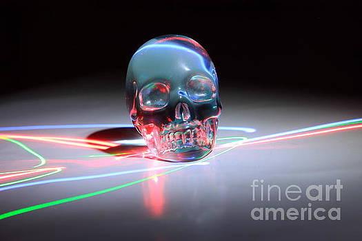 Abstract Skull by Teresa Thomas